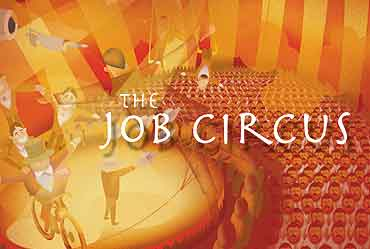 The Job Circus