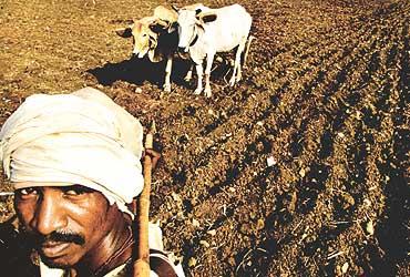 The Fear Of Rural Failure