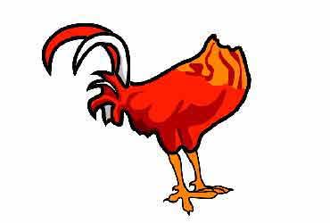 The Headless Chicken Journals