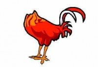 The Headless Chicken Returns