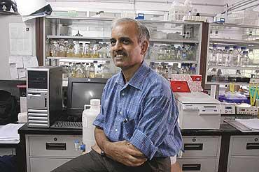 J. Gowrishankar