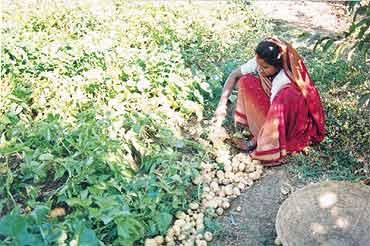 Singhpur's women take the first steps towards self-sufficiency
