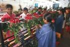 Red money: Inside Reddy's rose farm