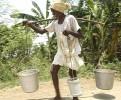 On the road: Farmer Baliga Ram carries water and animal feed in Karzada village