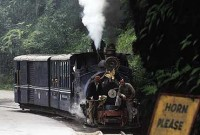 Slow Train Up