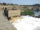 Froth venom: Waste water from chemical industries flows into the Damanganga