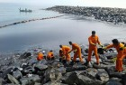 Effects Of Chennai Oil Spill Intensify, Cleanup In Progress