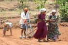 Curfew in Part of Mandsaur as Farmers' Stir Turns Violent