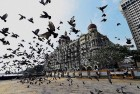 Another LeT Suspect in 26/11 Case Released On Bail in Pakistan