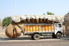 Petition To Stop Overloaded Trucks: HC Seeks FCI, Delhi Govt Reply
