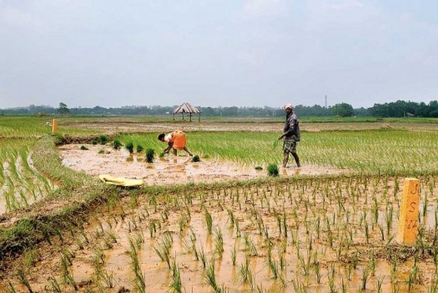 SC Grants Compensation Of 1 Crore To Boy Who Lost Both Arms In Agriculture Field, Blames HP Govt For Negligence