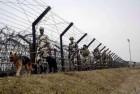 Pakistan Shells LoC Areas Again, 1000 People Evacuated