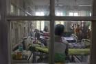Centre Seeks Report on Dengue, Chikungunya From Delhi Govt