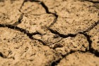 600,000 People In Sri Lanka Hit By The Worst Drought In A Decade