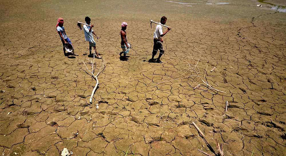 maharashtra drought In maharashtra more than 3000 farmers have committed suicide in 2015 alone due to severe drought this year in just three months, about 60 farmers have ended their.