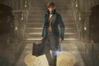 'Fantastic Beasts' Sequel to Explore Dumbledore's Sexuality, Hints Rowling