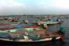 Five TN Fishermen Arrested by Lankan Navy