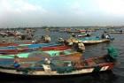 Twelve Indian Fishermen Arrested By Sri Lankan Navy