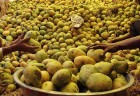 EU Likely to Lift Ban on Import of Indian Mangoes in Dec