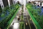 Green Highways: To Harmonise Development and Environment