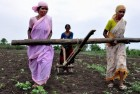 Bengal Govt Campaign To Ensure KCC Loans For Farmers