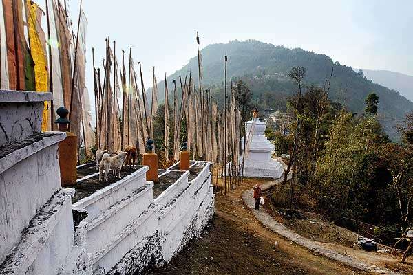 Sikkim Gets Highest Number of Foreign Tourists Among NE States