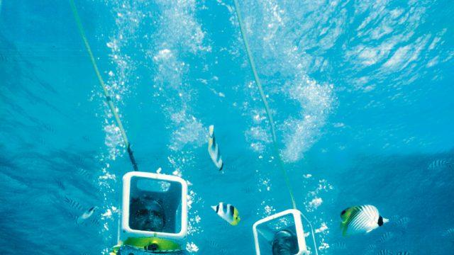 An undersea walk