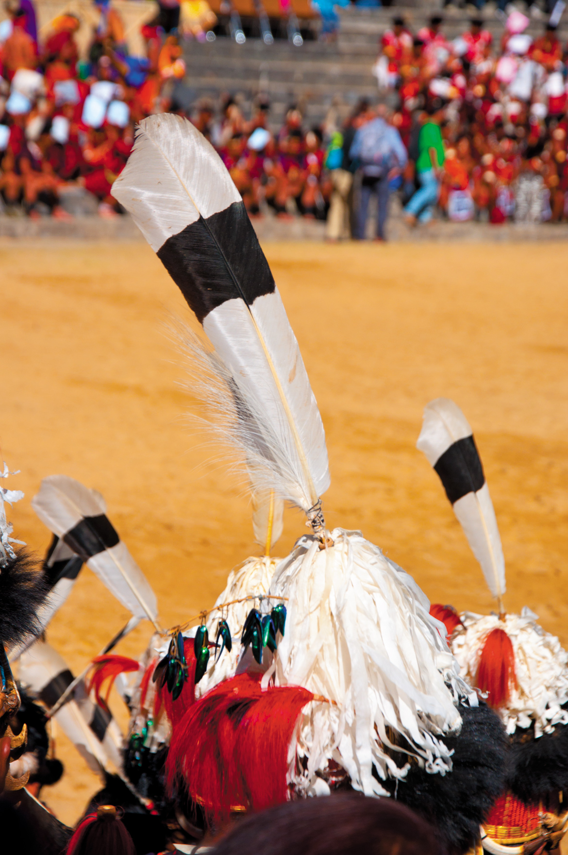 Hornbill feathers adorn tribal headgear