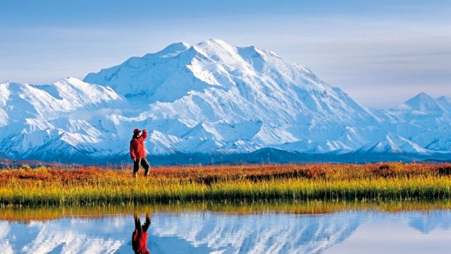A tourist takes in the view at Denali National Park