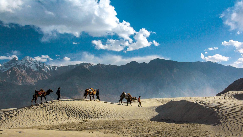 March 2017: Nubra Valley, Ladakh by Saptarshi Kar