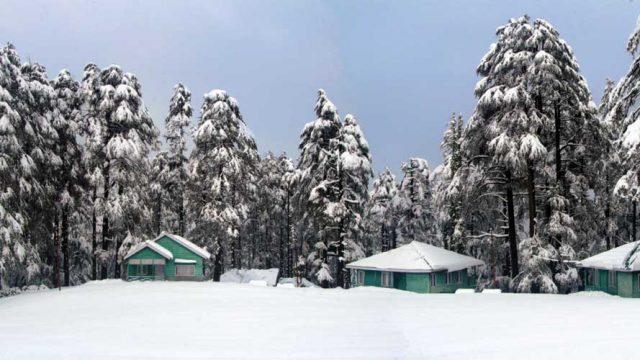 Winter at Patnitop