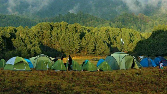 Verdant hills around Ziro