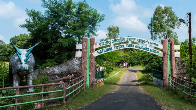 Entrance to the Ghughwa National Fossil Park