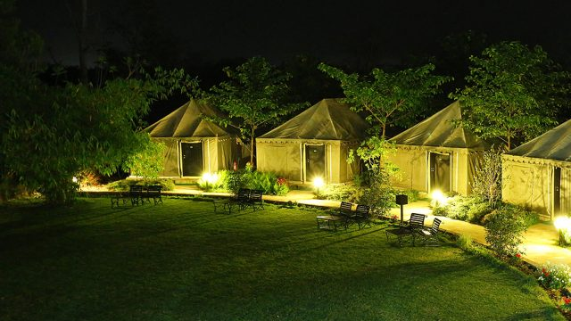 Luxury-Tents-golden-tusk