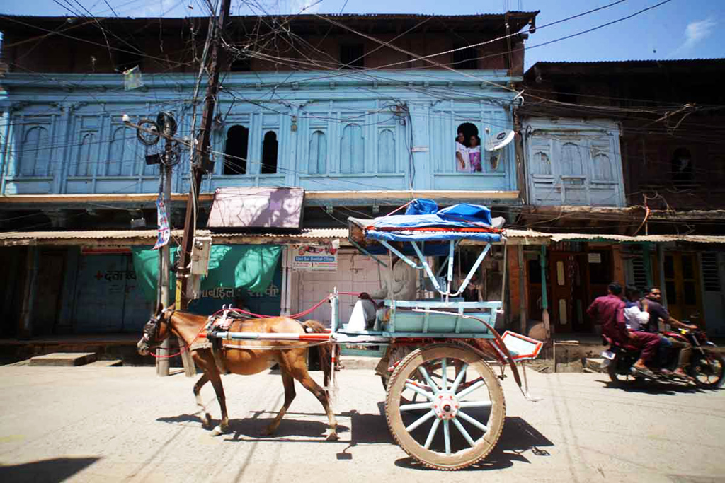 A horse-cart outiside the haveli in Burhanpur