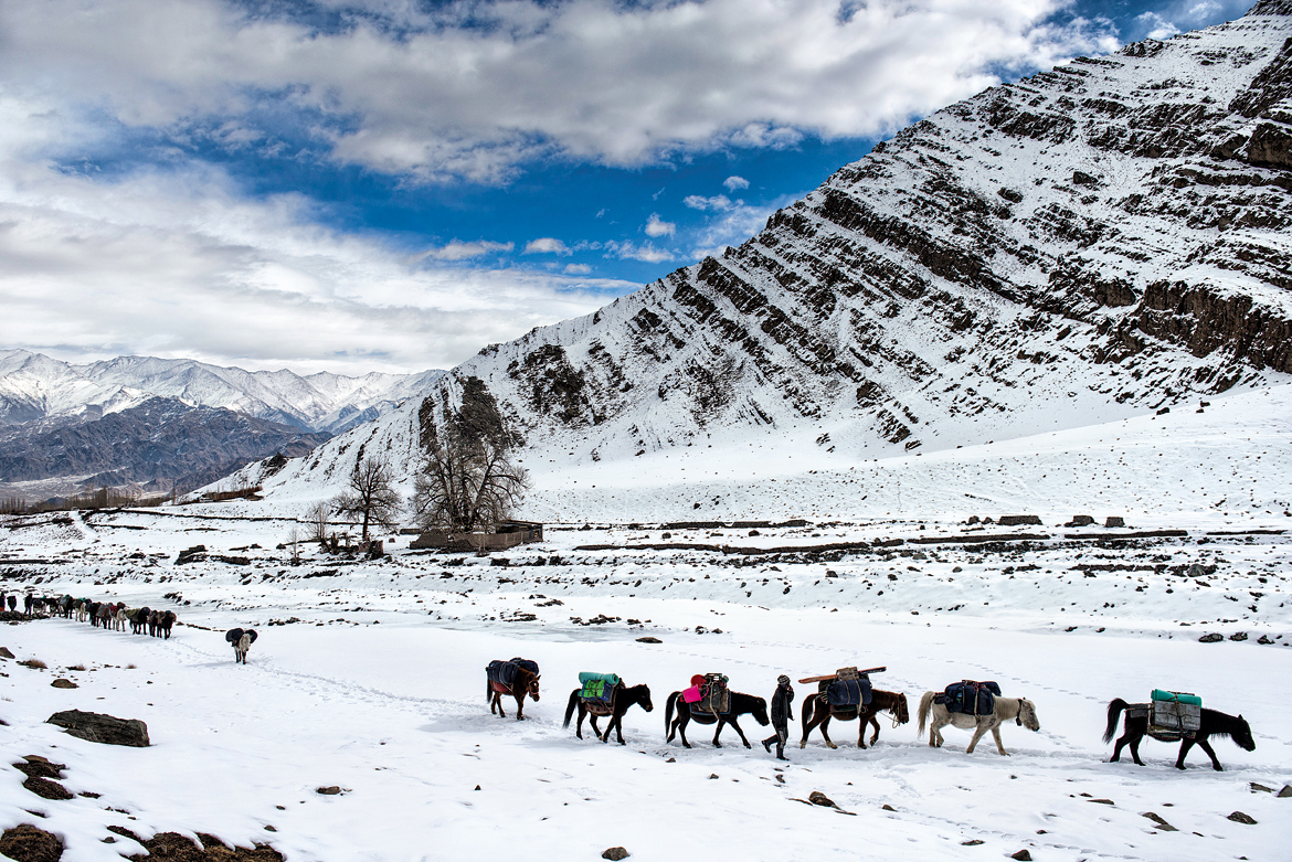 Our pack horses, laden with supplies and necessities like tents and climbing gear,make their way through Stok village. The snow was thick enough for us to begin our trek from the roadhead in snow boots. Our shoulders were thankful we didn't have to carry them, though we couldn't say the same for our feet.