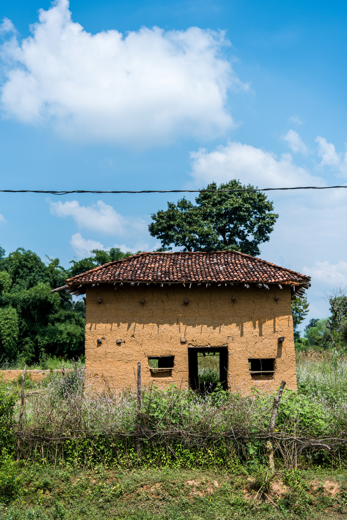 At Sarekha village in Kanha, a mud structure is supported by a timber framework.