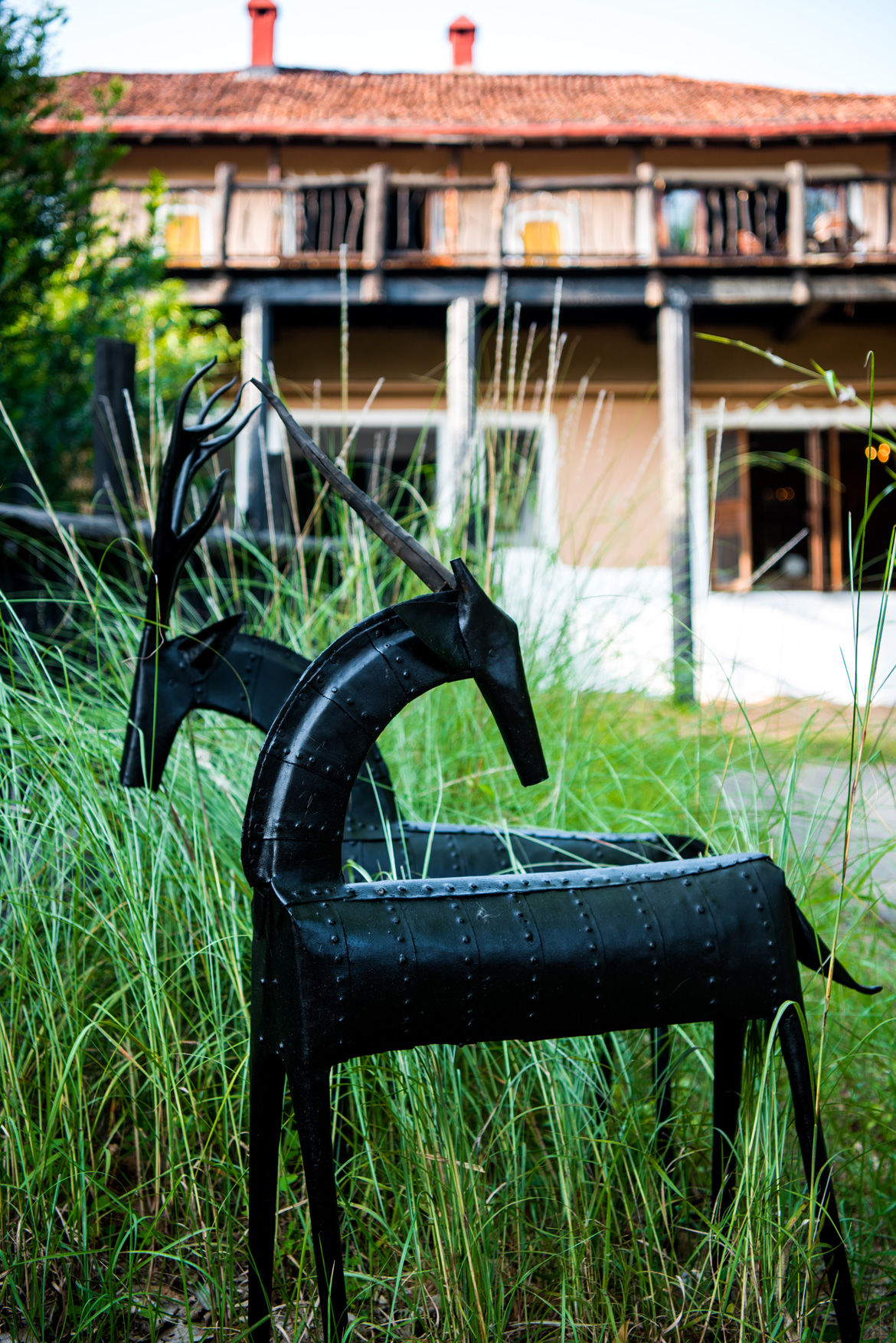 Samode Safari Lodge is filled with sculptures made by local tribe and other locals' belongings