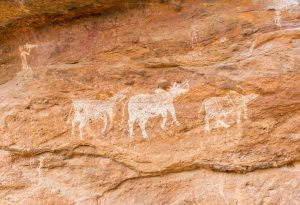 Rock painting at the Badkachar Rock Shelter shows a group of animals (in white) and a hunting scene on top.