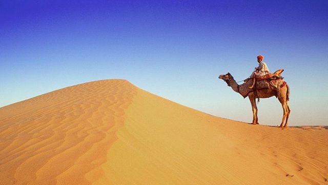 261214164409-rajasthan_camel