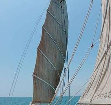 Dr John, expat Brit, trims the Rosa's sails, the first recreational yacht on the Registrar of Indian Shipping