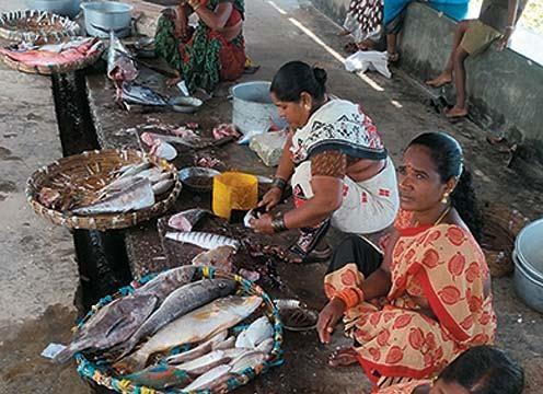 The fish market at Hut Bay